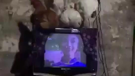小姐姐:过年回家天冷不想起床!在被窝用4鸡网看电视,有想一起的吗?