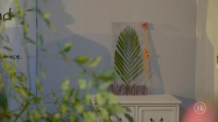两款快手植物相框,简单易上手,让家瞬间温馨起来