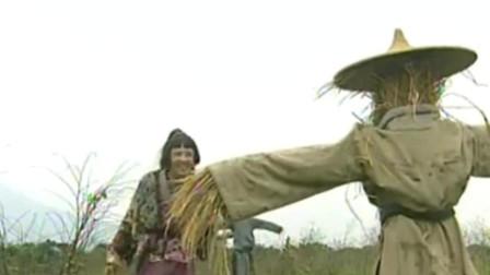 秀才爱上兵:美女用稻草藏尸的方法不辱使命成功带回衙门