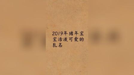 2019猪宝宝活泼可爱乳名