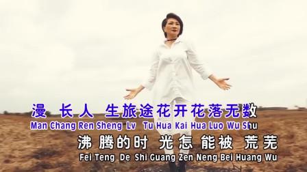 台湾美女深情翻唱《沙漠骆驼》,独特的嗓音让这首歌焕发新激情