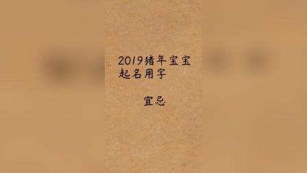 2019年猪宝宝起名宜忌