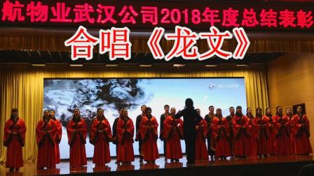 中航物业武汉公司2018年度总结表彰大会 合唱《龙文》