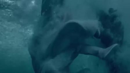 绝世千金:穿越女掉进了河里,王爷看到后赶紧下去救她,这下糟了