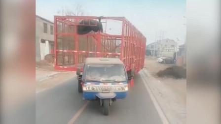 司机太有才,三轮改装成大货车!