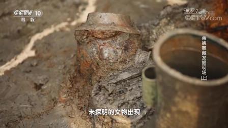 考古人员在这个窖藏坑里发现了数量众且关系复