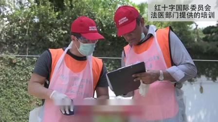 为红十字国际委员会工作:法医专家