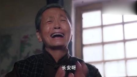 岁岁年年柿柿红:家荣遭遇意外,一家老小哭作一团,律师看在眼里!