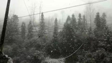 雪下的那么深,下的那么认真