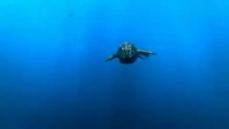 《远古入侵》:巨大沧龙捕食人类,不料却被更大的同类一口吞下!