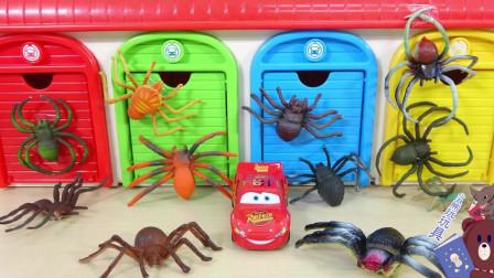 蜘蛛和玩具汽车比赛亲子游戏