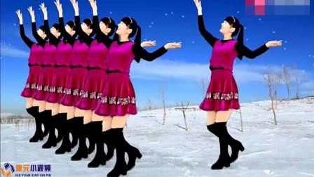 2019年最新广场舞《又见雪花飞dj》我家乡下雪了,动作简单附分解