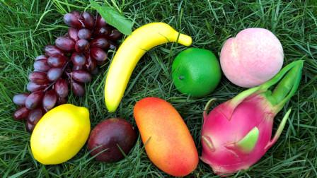 认识百香果等八种美味水果,乐宝识水果,森林探险游戏