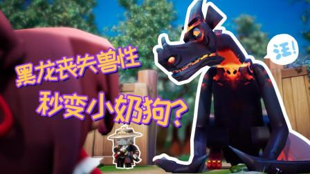 迷你世界《花语程行》第七集:黑龙丧失兽性,秒变小奶狗?