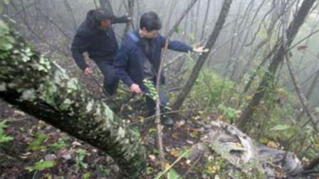 四川什邡两农民上山采药,挖出百件瓷器,考古