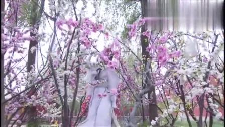 女子在御花园跳舞,舞姿翩翩,皇上路过驻足观看