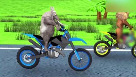创意早教: 卡通恐龙猩猩大象狮子老虎比赛 认识动物学英语