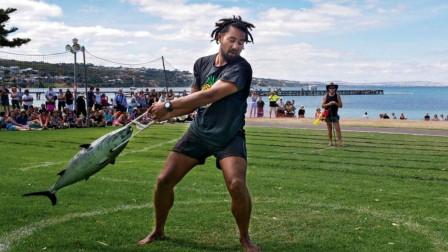 澳大利亚举办金枪鱼节,节日的主题不是吃,而是看谁扔的远?