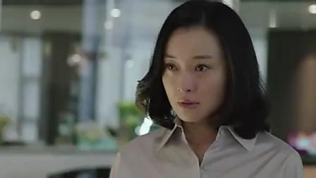 《我的前半生》:薛甄珠怒闯凌玲公司,痛骂小三,霸气又解气