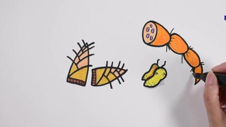 简笔画食物蔬菜简笔画图片大全儿童画幼乐园画画作业简笔画学英语
