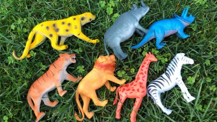 认识猎豹等八种陆地野生动物,乐宝识动物