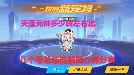 QQ飞车手游:天蓬元帅宠物多少钱出?几个号测试结果总结分析