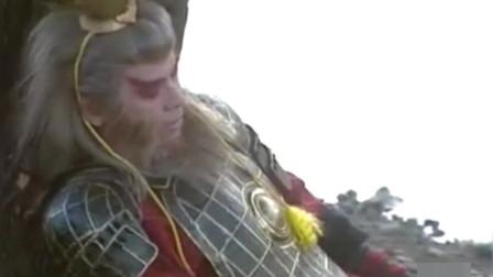 悟空三败通臂猿猴,双猴会就此落幕