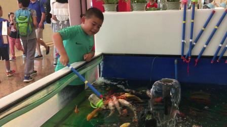 【7岁】7-2哈哈在环球港用奶瓶给鲤鱼喂鱼IMG_0695.MOV