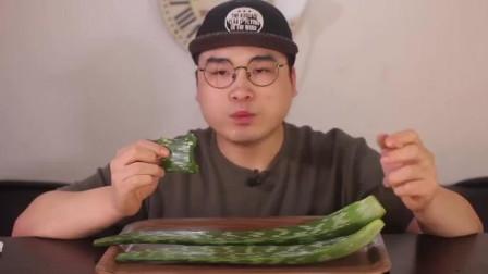肉、水果、蔬菜都消灭完,现在要瞄向芦荟!胖哥生啃多肉植物芦荟