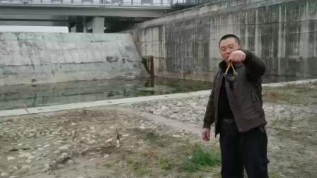 崇州青苹果过猪年玩弹弓
