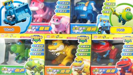 玩帮帮龙出动 恐龙探险队 音效变形玩具  5隻 玩具开箱