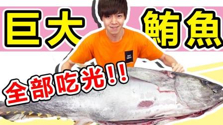 """巨大的鲔鱼""""金枪鱼""""挑战吃完一整只,做成生鱼片大胃王开吃【黄氏兄弟】"""