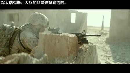 【刺激震撼的战争名场面】美军正和敌人激烈的交火,多亏军犬有灵性,救下大兵的性命!