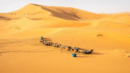 世界上最大的沙漠,其面积和中国差不多,而且还在不停扩张!
