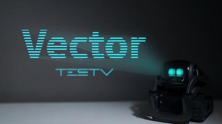 有感情的机器人_Vector【值不值得买第310期】