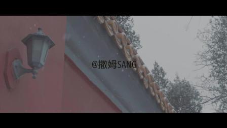 松下GH5|2019雪@景山公园
