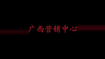 企叮咚宣传片=广西营销中心