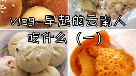 云南早餐吃什么 破酥包 糖包 叉烧包 糯米饭 饼 粑粑 云南 早餐