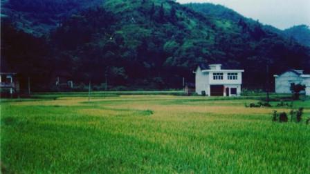 湖南一个小镇,我去了30张15年前照片里的地方重拍