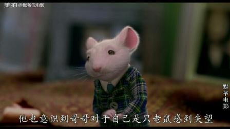 电影解说《精灵鼠小弟》