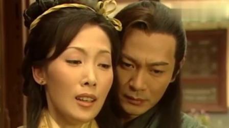 碧血剑:温仪怀有身孕,金蛇郎君为了孩子,表示愿意放下仇恨!