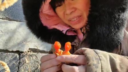 农村艳子:东北农村,大冬天的还有野果子?艳子摘下两个就吃,尝尝啥味道