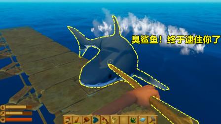 木筏求生:终于让我逮住大鲨鱼了!今天我要挂鲨鱼头,红烧大鲨鱼