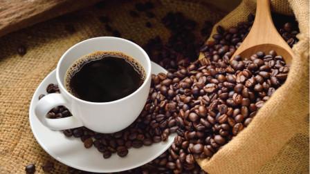 猫屎咖啡好喝!原料却出人意料,野生麝香猫粪便中的咖啡原豆