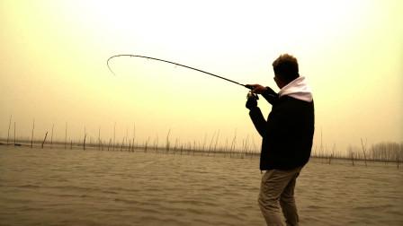 喔,这条可以诶-Basshow路亚钓鱼