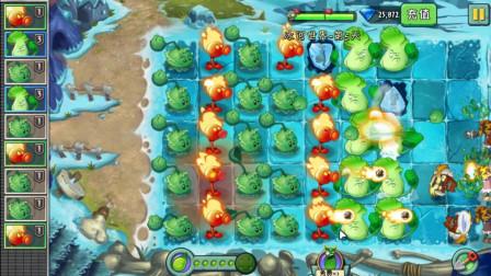 植物大战僵尸2,火豌豆不但能攻击僵尸,还是个暖暖的火炉!