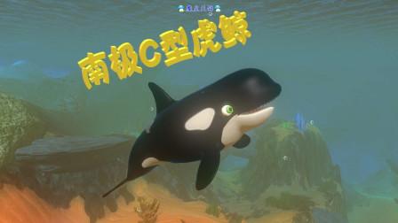 天铭 海底大猎杀 第二季 09 南极C型虎鲸