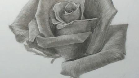 大师素描玫瑰花,想必女孩子们都无法抗拒吧