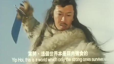 古龙电影边城浪子结局:叶开灭万马堂,大战父仇人丁白云