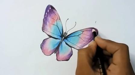 如何用彩铅画一只漂亮的蝴蝶,彩铅入门视频演示